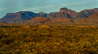 Early Morning in Big Bend